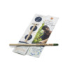 matita piantabile